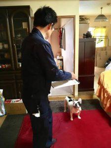 社長vs犬