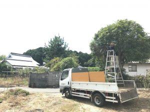 木の伐採2
