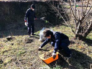 草木の回収